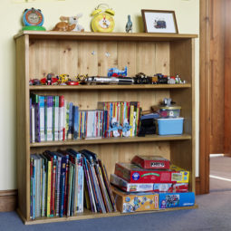 Kids Bookshelf Traditional